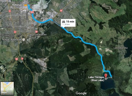 rotorua blue lake tikitapu viajar pela nova zelandia