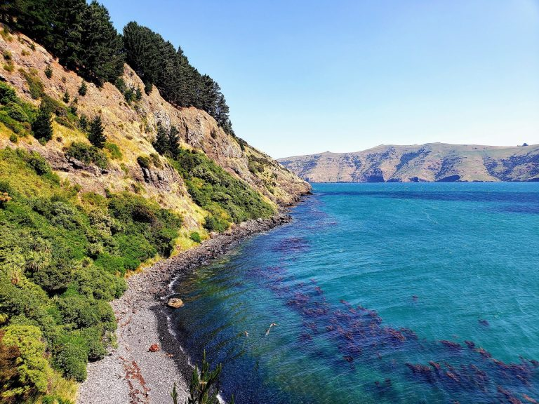 Akaroa, Canterbury, New Zealand – 3 Day Trip