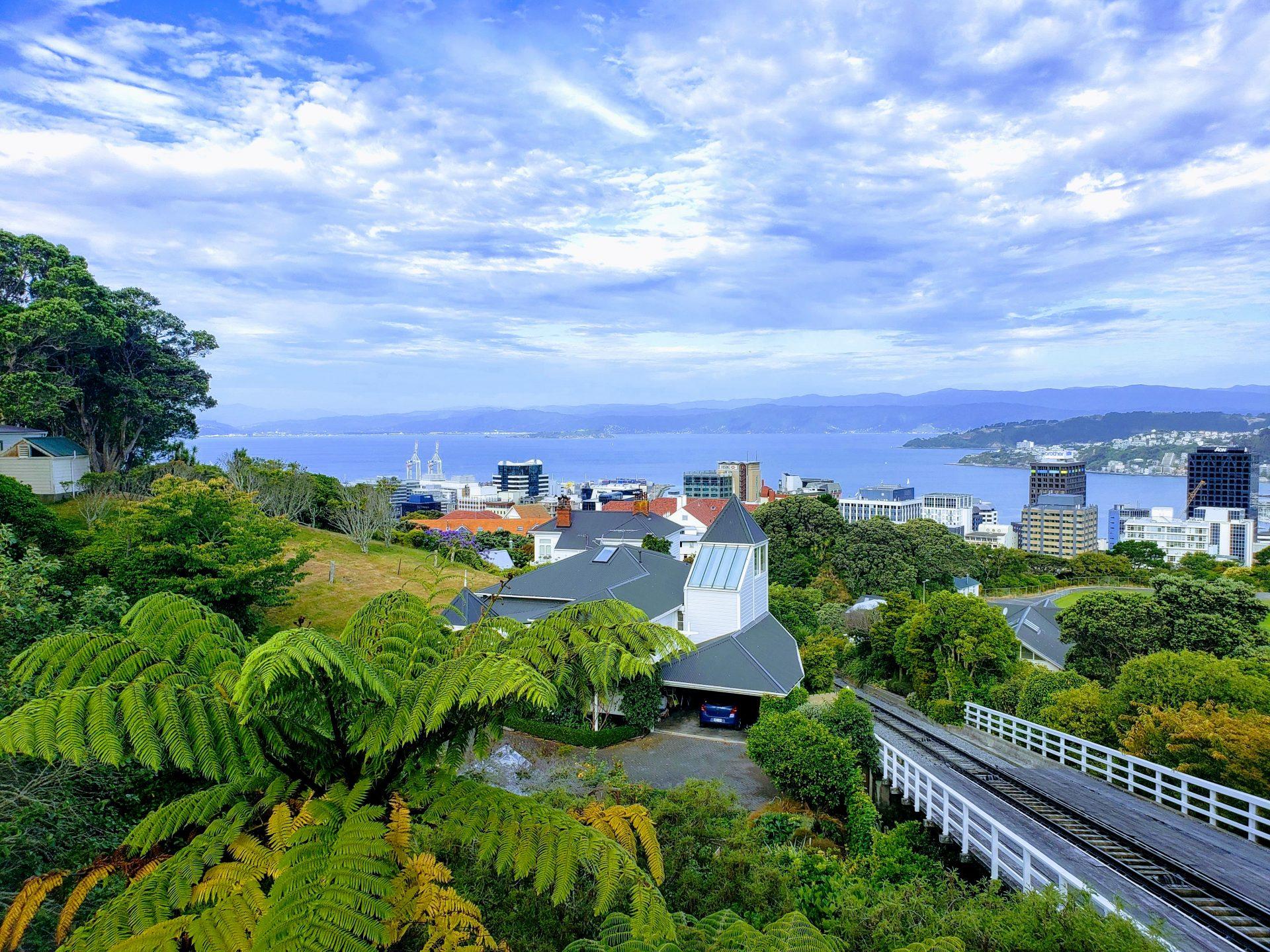 Wellington, New Zealand – 1 Day Trip