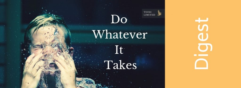 Do Whatever it Takes, Toisc Limited, Success