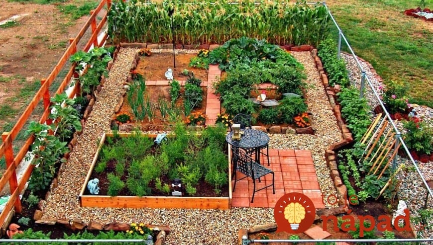 Above Ground Vegetable Garden Box Ideas