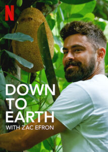 Down to earth zac efron errin serie blog