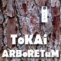 Tokai Arboretum – Experience The Outdoors
