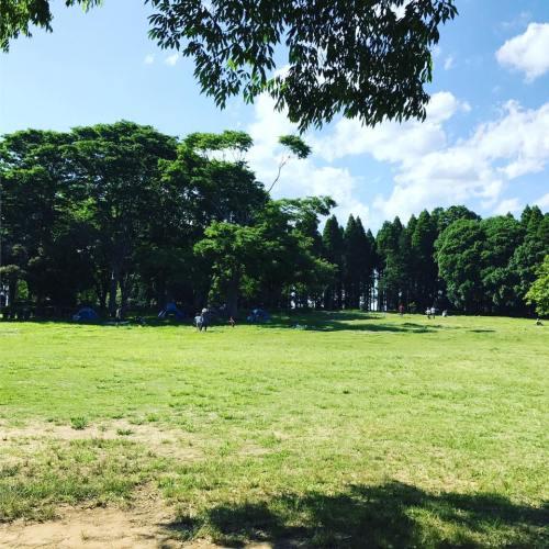 昭和の森の写真