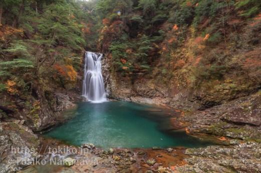 大杉谷・堂倉滝
