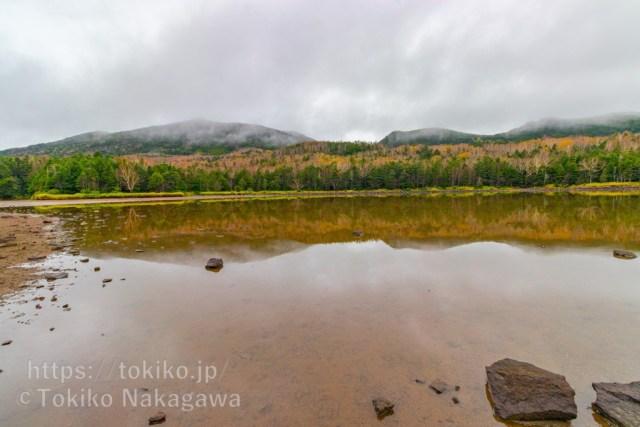 北八ヶ岳・雨池