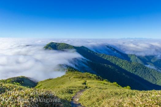 平標山中腹から見る雲海と滝雲