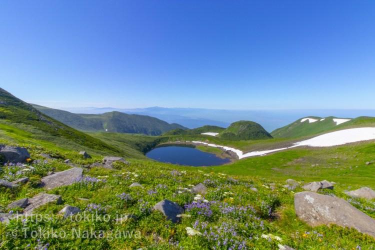鳥海山登山|鳥海湖とお花畑