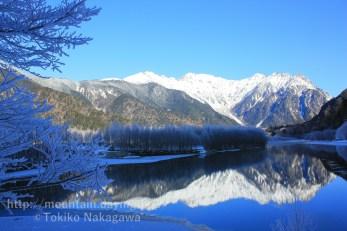 冬の上高地・大正池の霧氷と穂高連峰