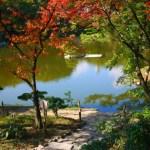 広島 紅葉 縮景園