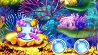 Pスーパー海物語 IN JAPAN2 金富士 小魚保留