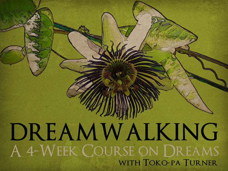 Online Dreamwork Courses: New dates!