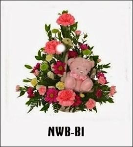 NWB06
