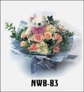 NWB08