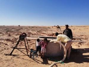 サハラ砂漠にエコファーム