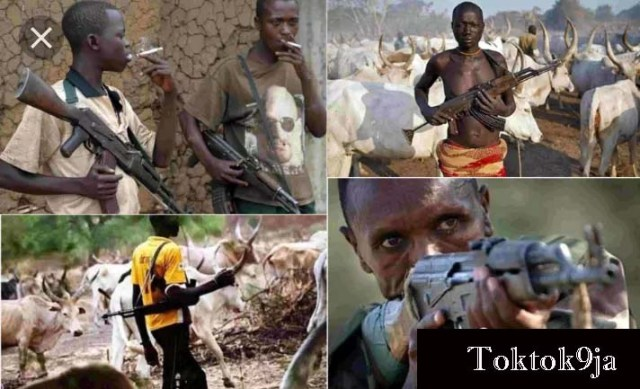 How I Was Abducted and Gang-Raped by Fulani Herdsmen
