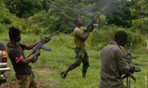 Vigilante Group Ambushed and Killed
