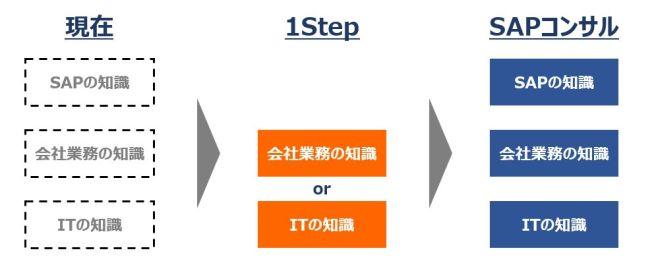 SAPコンサルへのスキル身に付けイメージ