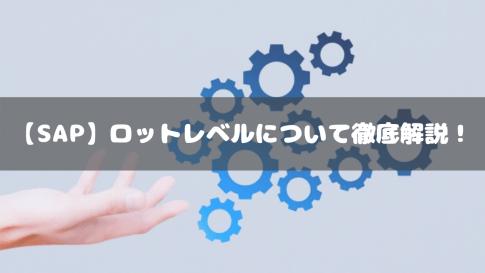 【SAP】ロットレベルについて徹底解説!
