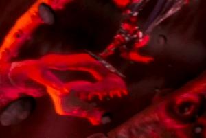 Power Rangers - 14x23 - Heir Apparent (2)_Aug 20, 2015, 6.02.23 PM