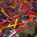 FLOWERS BY NAKED/假屋崎省吾の世界展/銀座で格安ランチ