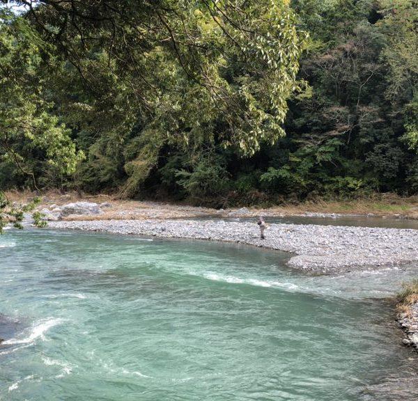 tokyo tour river sake