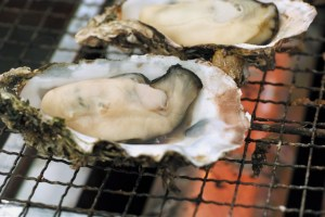 kaki oysters winter japan food