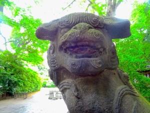 武蔵野八幡宮の狛犬