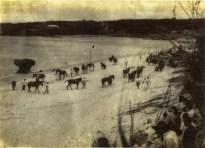 終戦後の昭和20年から30年にかけて茶花のイチョーキ長浜で開催されていました。この写真のに写っているレースの場所は、子抱(クァーダキ)石辺りから茶花寄りの砂浜のようです。