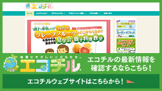 エコチルWEBサイト