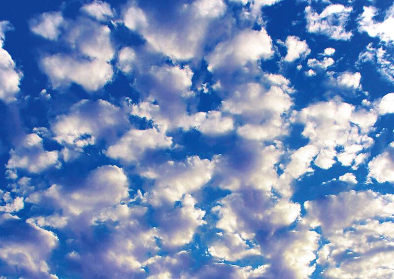 雲のふしぎ 見上げてみよう!空と雲 | エコチル首都圏版(東京・横浜 ...