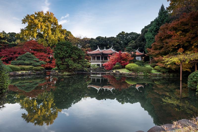Shinjuku Gyoen Japanse tuin Tokyo