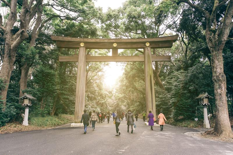 Yoyogi Park in Tokyo