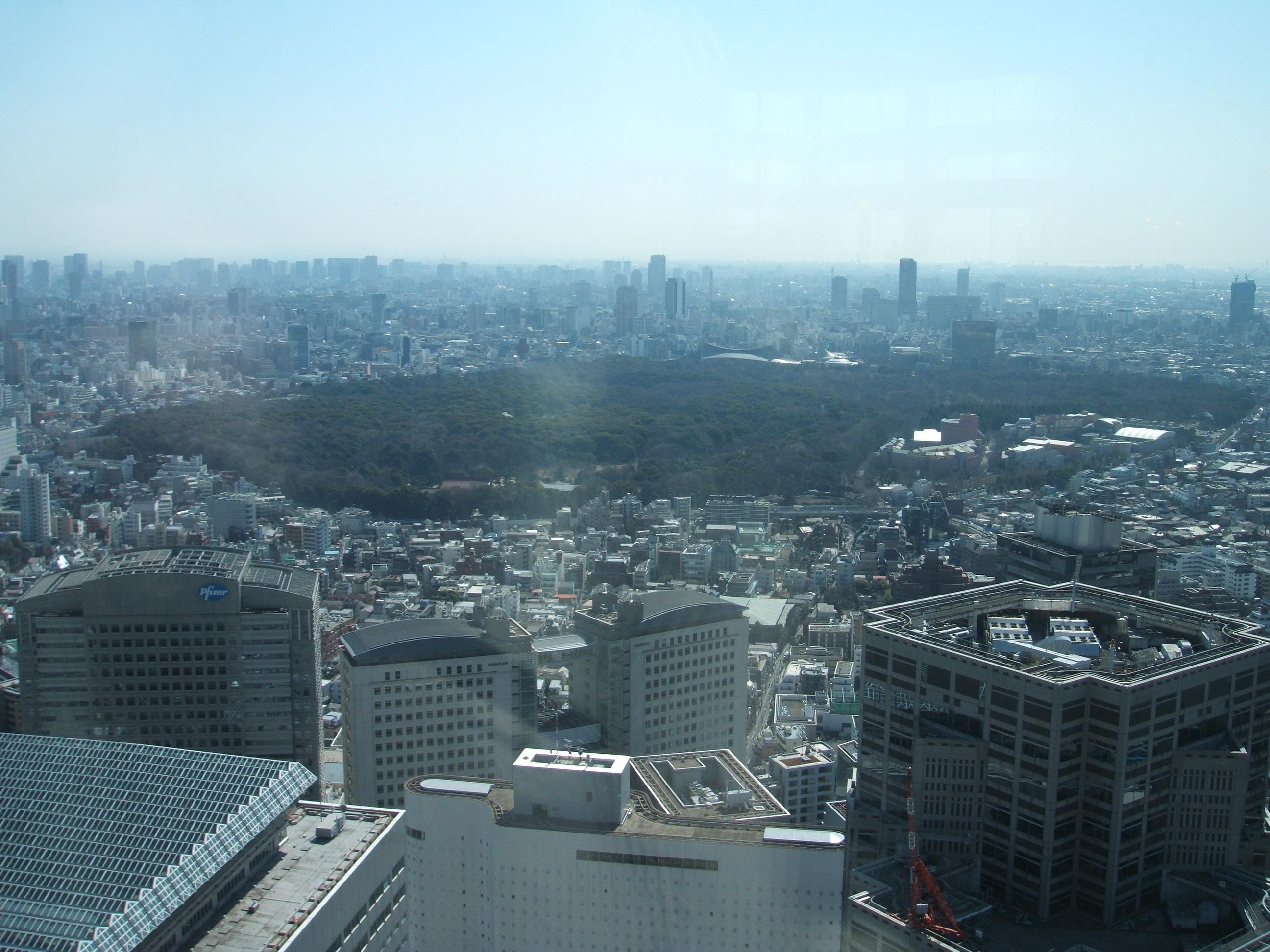 「明治神宮」 (Meiji Shrine) grounds are visible