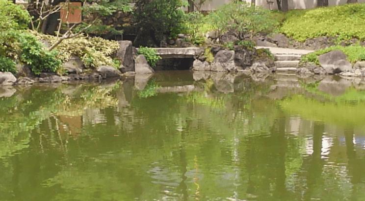 Former Yasuda garden – Japanese pond
