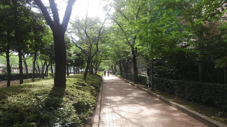 Former Yasuda garden –route