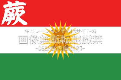 蕨市 ワラビスタン国旗