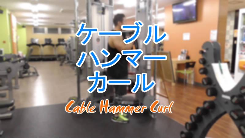 ケーブルハンマーカール(Cable Hammer Curl)のやり方とフォーム