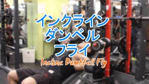 インクラインダンベルフライ(Incline Dumbbell Fly)のやり方とフォーム