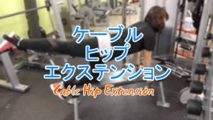 ケーブルヒップエクステンション(Cable Hip Extension)のやり方とフォーム
