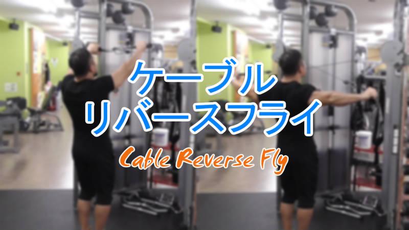 ケーブルリバースフライ(Cable Reverse Fly)のやり方とフォーム