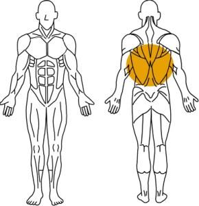 ジャイアントセット法とは?筋肥大より筋持久力アップに効果的!