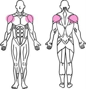トライセット法で筋トレ!筋肉のカットや絞りを出すスキルのやり方