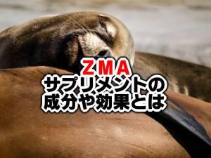 ZMAサプリメントの効果とは?睡眠のサポートや筋肥大にも期待!