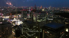 view from the Tokyo Metropolitan Government bldg.