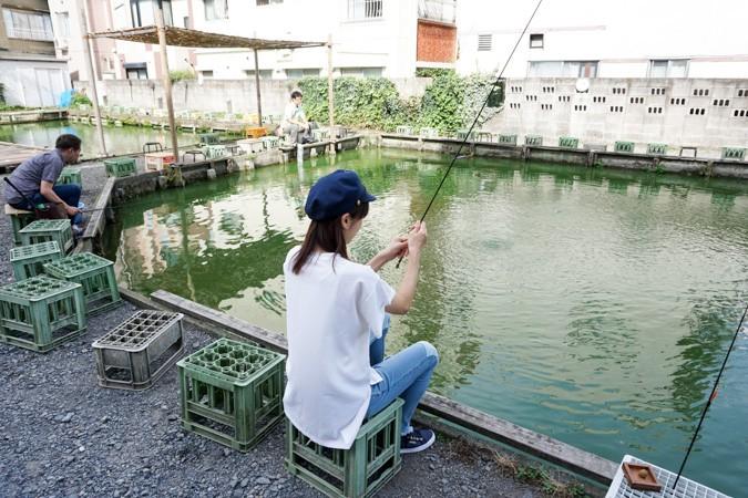 阿佐ヶ谷 金魚 の 池
