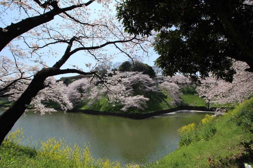Na beira do canal que cerca o Palácio Imperial
