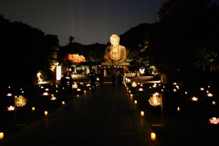 かまくら長谷の灯かり 鎌倉大仏殿高徳院 ライトアップ