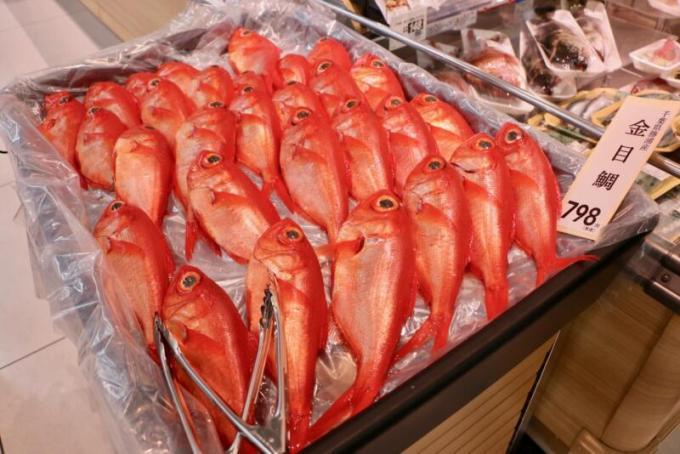新鮮な勝浦産の金目鯛