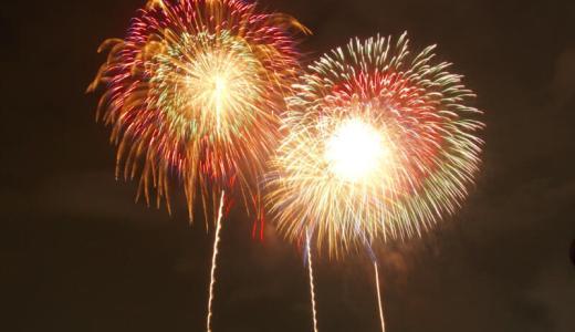 東京湾大華火祭の休止が決定、今後は再開催の取り組みも
